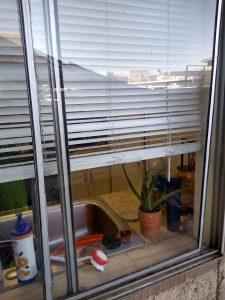 single pane window job service